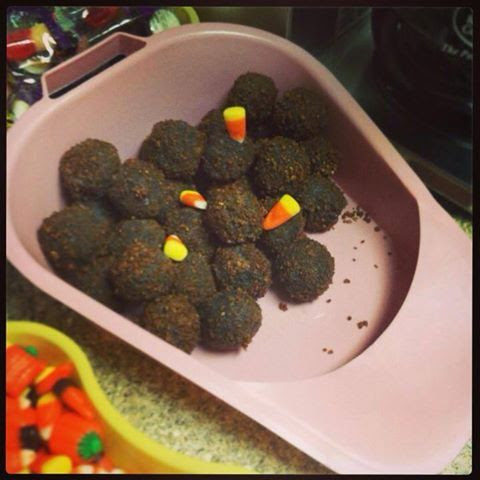 Corny ICU humor.  Chocolate cake balls and candy corns photo.