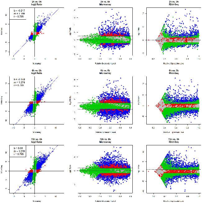 Comparison Of Rna Seq And Microarray In Transcriptome