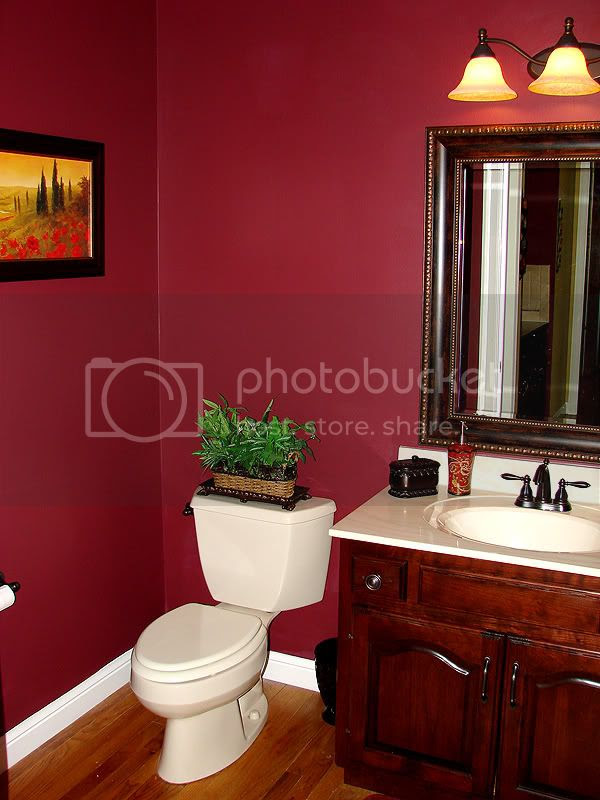 Powder Room Paint Ideas | DIY Decorating , Room Design Ideas