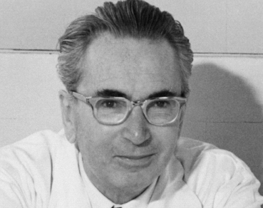 Existentialist Psychologist Viktor Frankl Explains How to Find Meaning in Life, No Matter What Challenges You Face