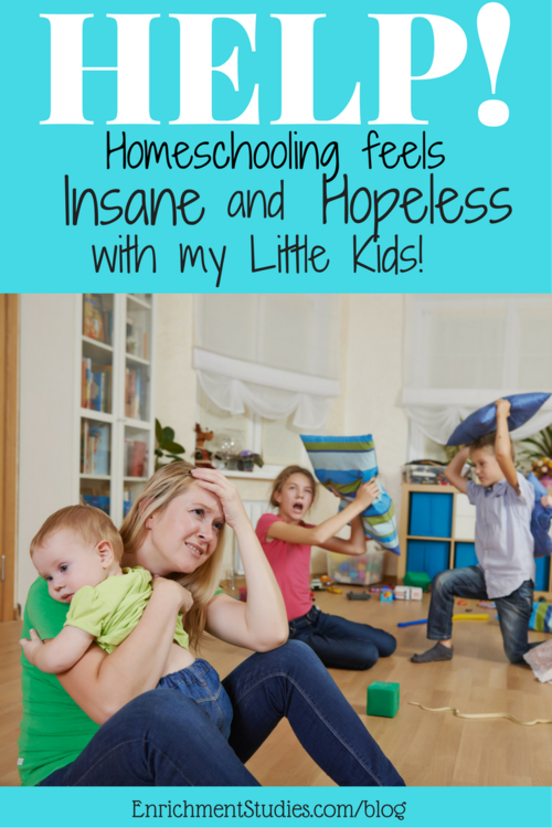 Help! Homeschooling Feels Insane and Hopeless With My Little Kids! - Blog