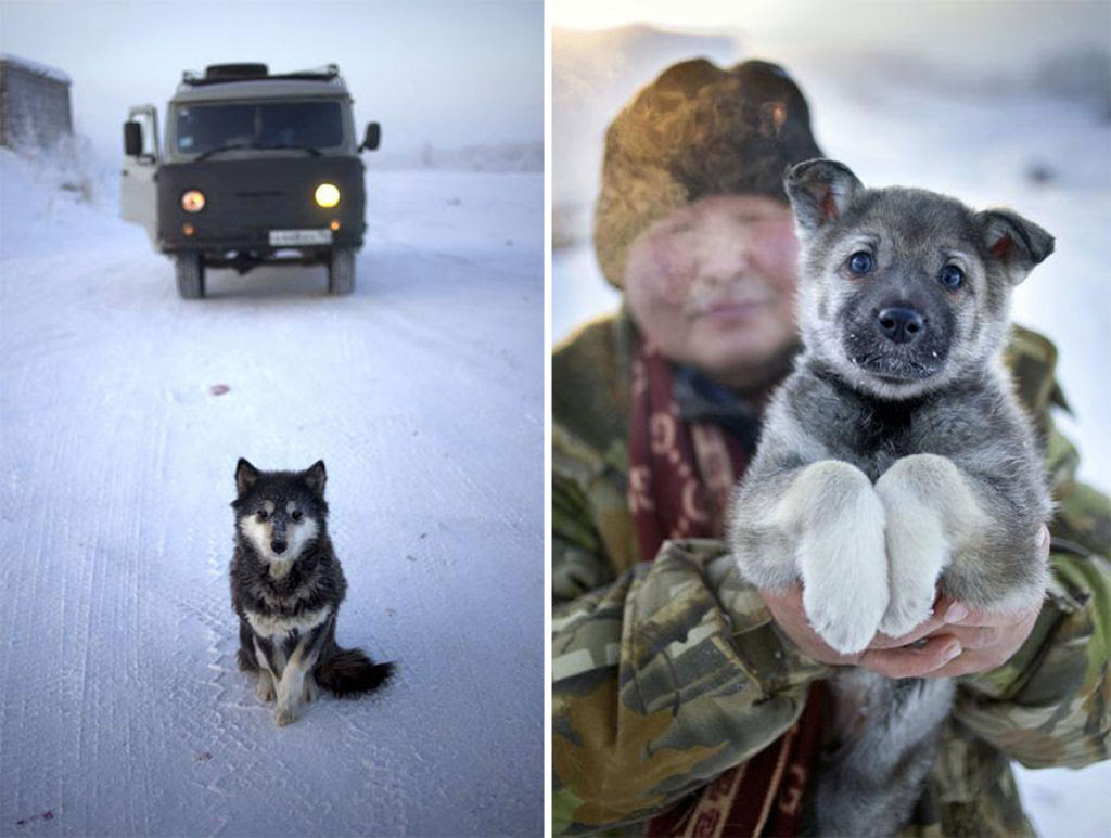 Conheça Oimekon, o povoado mais frio do planeta 22