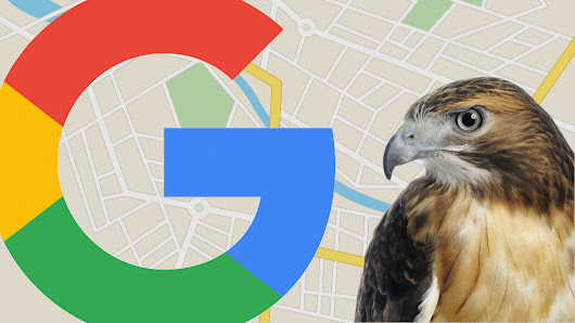 August 22, 2017: The day the 'Hawk' Google local algorithm update swooped in