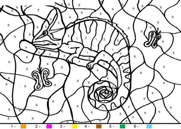 Coloriage Magique Maternelle Un Hippopotame Imprimer Coloriage