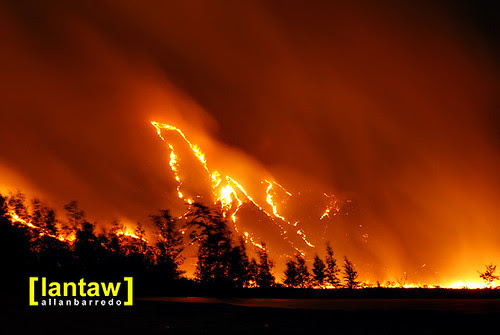 Nagsasa Wildfire/Bushfire 2