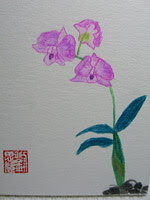 Orchids 4 - by Mrs RamblingLibrarian