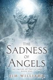 cover for The Sadness of Angels by Jim Williams