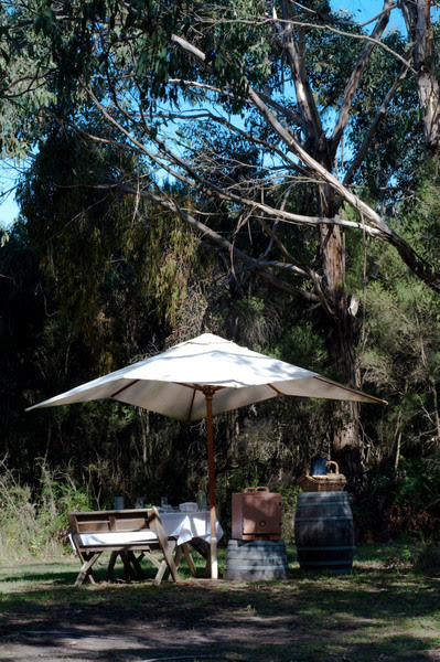 Picnic at Montalto