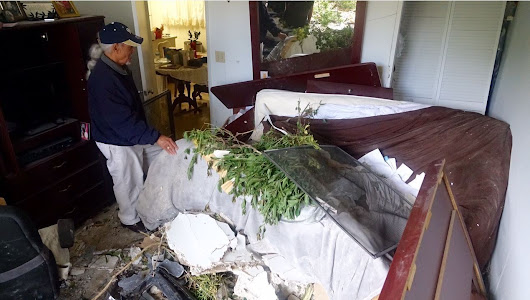 Hollywood couple in their 80s survive SUV crash into their bed