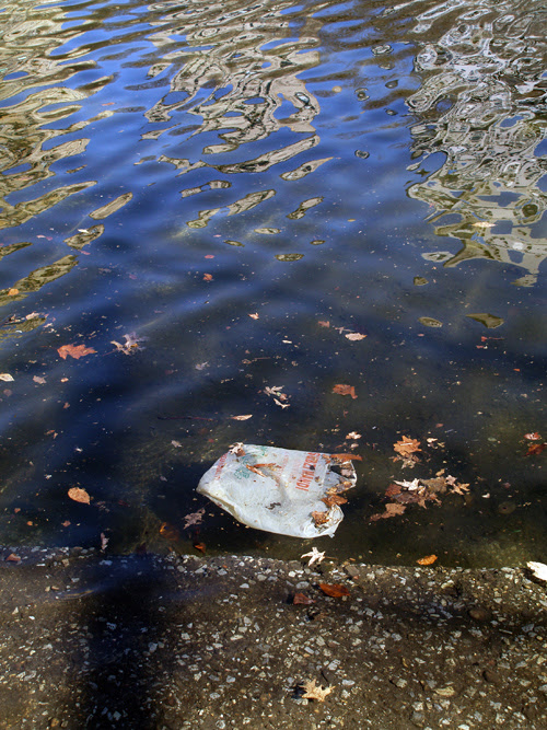 plastice bag in Central Park pond