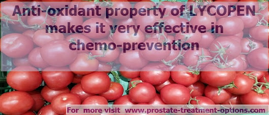 Does Lycopene Resolve Prostate Cancer Concerns?
