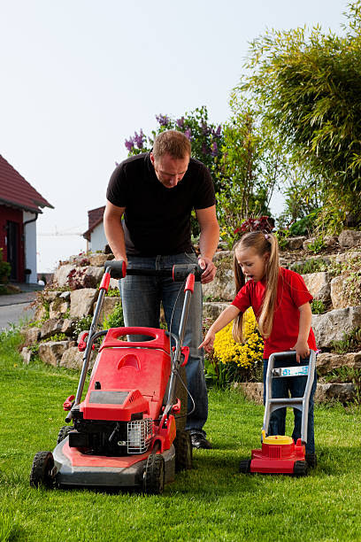Lawn Mower: A Guide in Choosing One