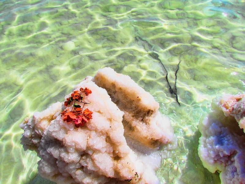 Соляная фигура Мертвого моря. Фото