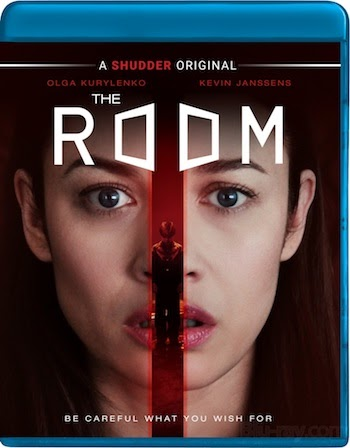 The Room 2019 Dual Audio Hindi 720p 480p BluRay 850MB And 300MB