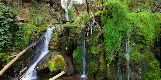 Gostilje, the oasis of intact nature in the heart of Zlatibor - Serbia.com