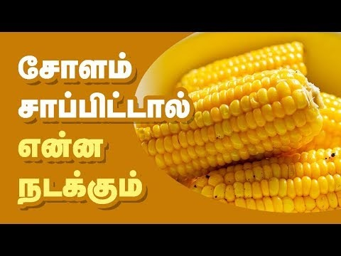 Health Benefits Of Corn In Tamil Health Tips In Tamil
