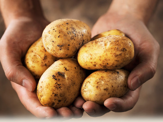 The Potato:  One of EWG's Dirty Dozen |   Only Organic