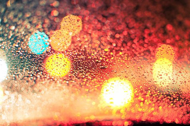 windshield 4