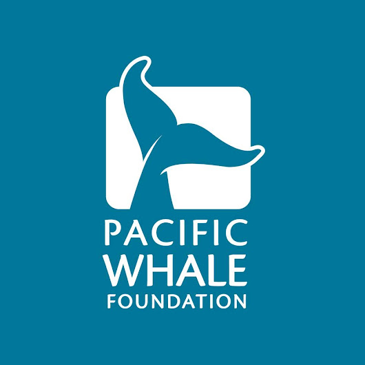 Pacific Whale Foundation - Certified Tour Operator
