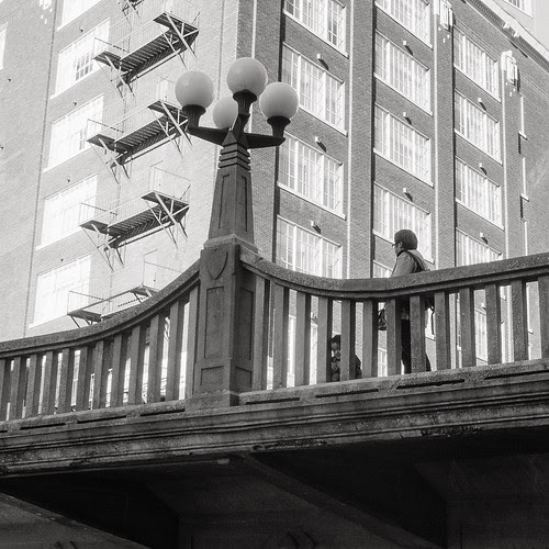 Peeking Through by Jesse Acosta