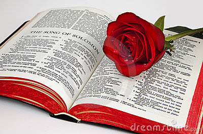 Solomon's Rose Royalty Free Stock Image - Image: 7708606