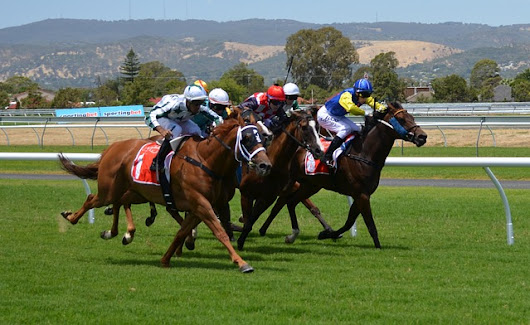 Tips For Durbanville Racecourse, South Africa 21 Oct 2017 - South Africa Horse Racing