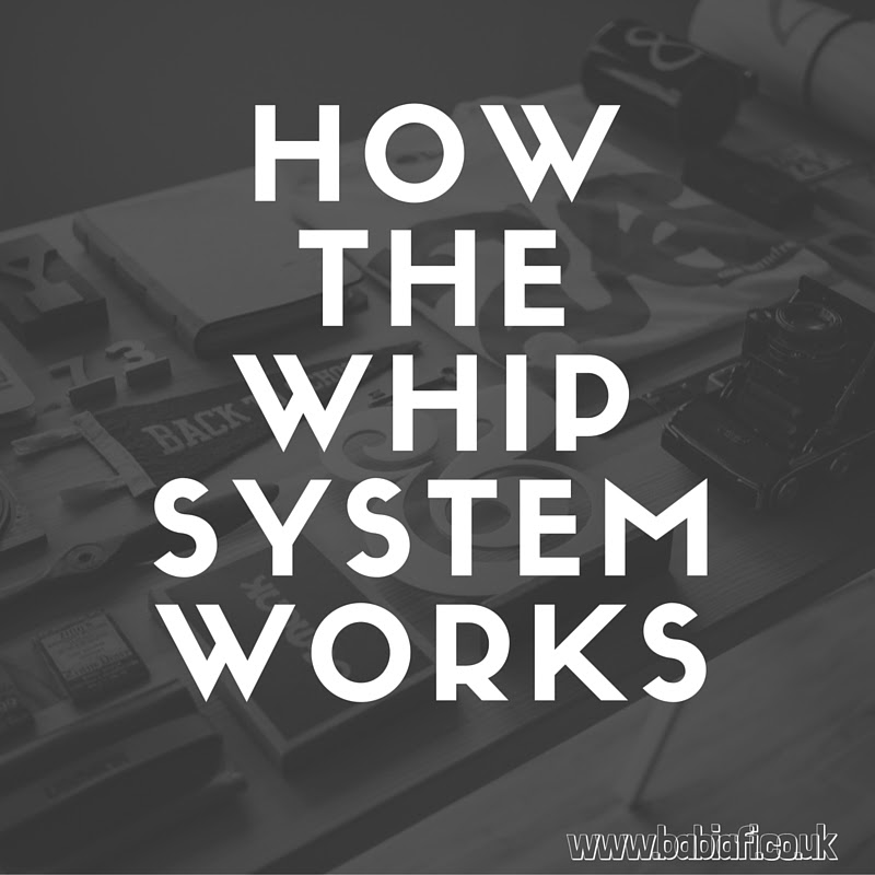 How the Whip System Works