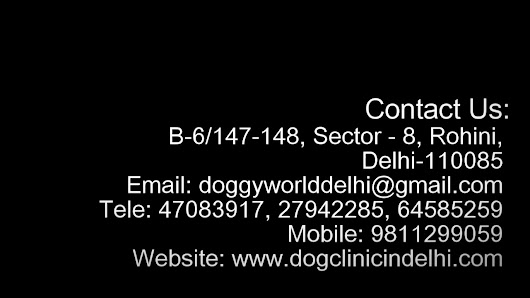 Veterinary Clinic in Rohini - Doggy World