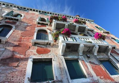 Flowers, Venice, Italy