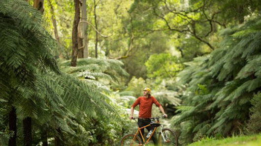 Push to make Warburton in Yarra Ranges mountain bike capital of Australia