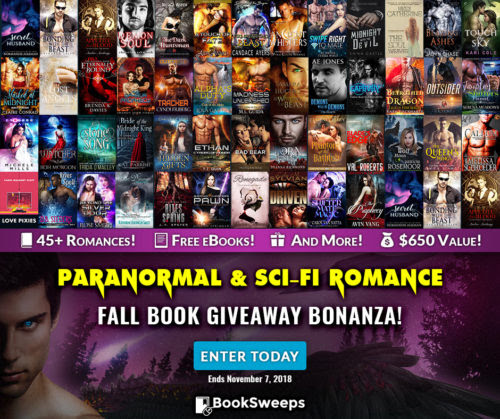 Booksweep's Fall Giveaway Bonanza! | Evangeline Anderson