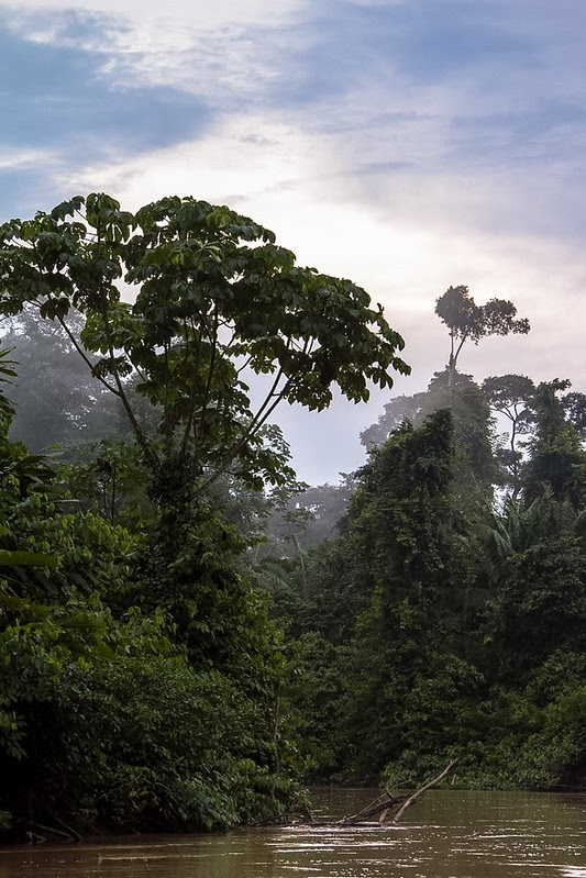 Mundo perdido Amazonas