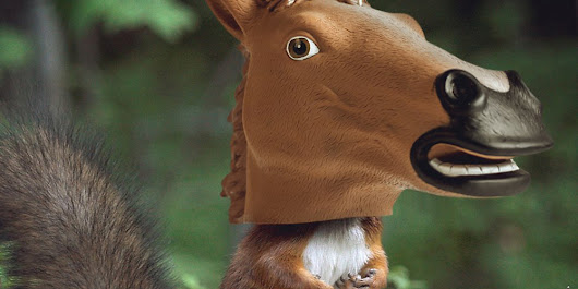 A Horse Mask That's Also a Squirrel Feeder, Because Why Not | WIRED
