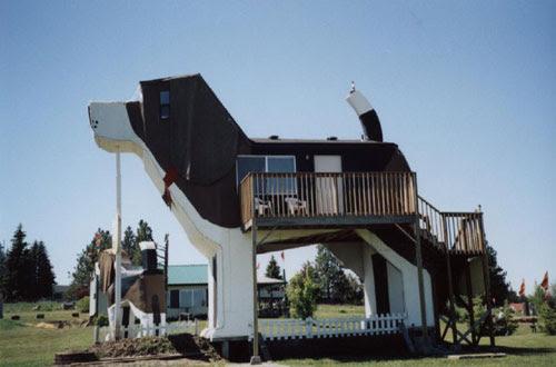 Dog Park Bark Inn