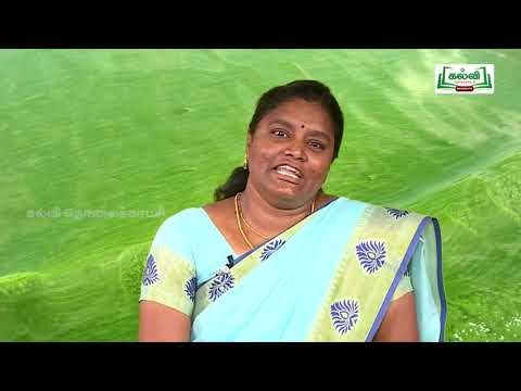 7th Social Science பேரிடரைப் புரிந்து நாள் 5, 6 Kalvi TV