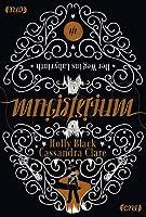 Magisterium I