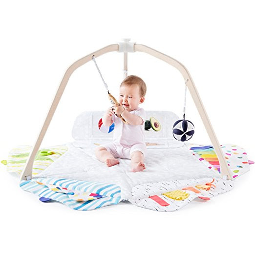 Toy Tuesday: Non-Toxic and Organic Playgyms for Baby