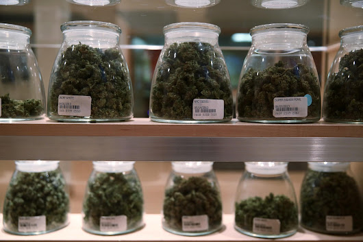Chicago firm invests in medical marijuana researcher