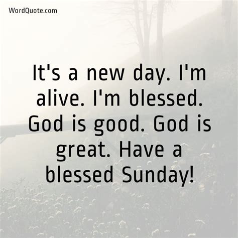 Have Blessed Sunday Everyone Quotes