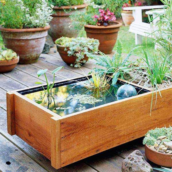 AD-Mini-Pond-In-A-Pot-10