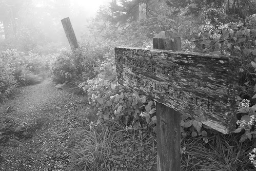 Appalachian Trail Journey (Black And White)