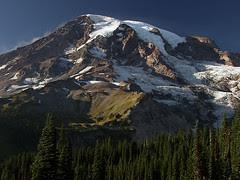 Mount Rainier and Trees