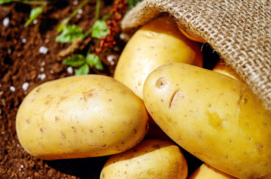 The Folklore Food Blog: A Big Fat Potato