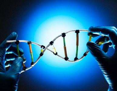 Resultado de imagem para biologia sintética