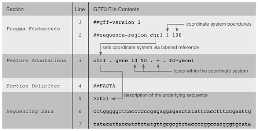 GFVO: the Genomic Feature and Variation Ontology [PeerJ]