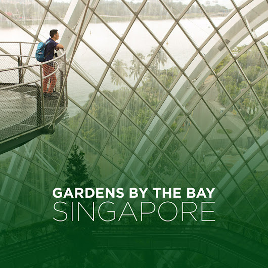 Singapore Gardens By the Bay » Local Adventurer >> Currently San Diego