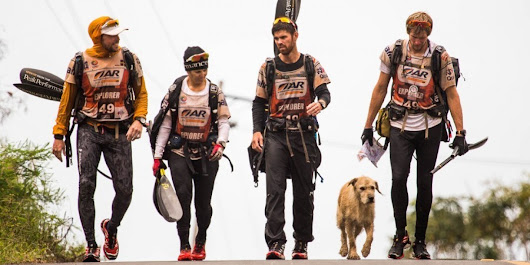 Stray Dog Found In The Jungle Treks Miles With Extreme Athletes Team To His Forever Home