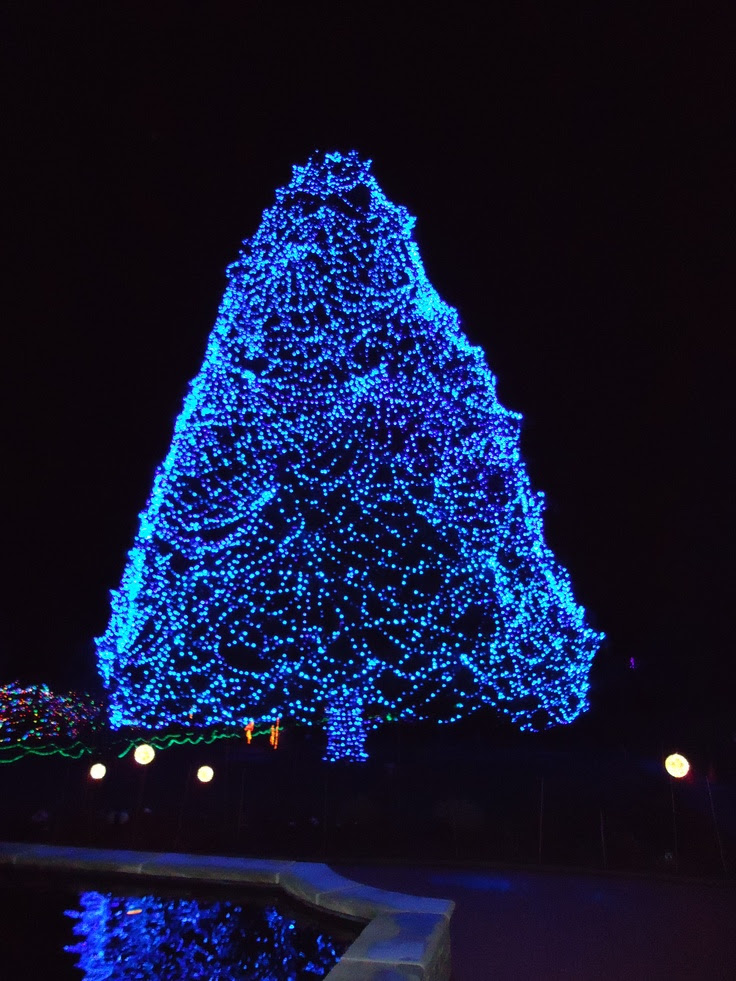Toledo Zoo Lights Before Christmas. | Holiday Lights | Pinterest
