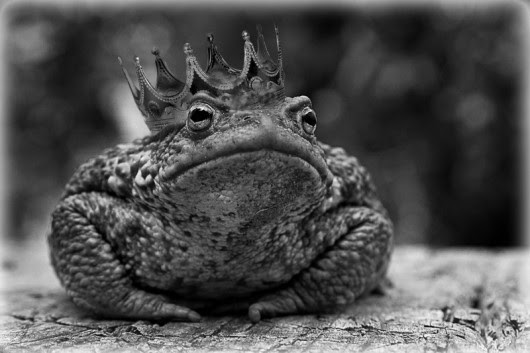remember The Princess and the Frog?-- she drops her golden ball into the pond and the frog offers to go get it for her...........