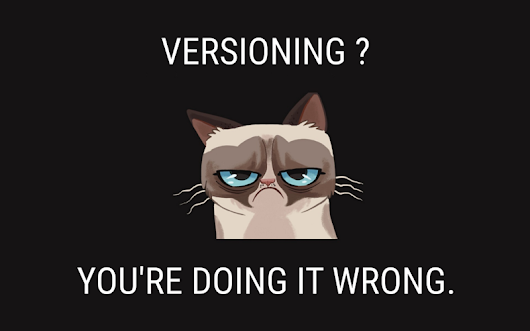 Versioning ? You're doing it wrong. — Front-end developer